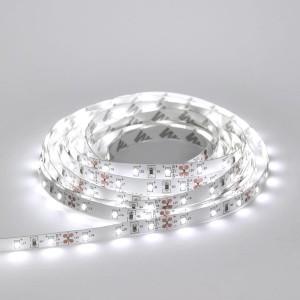 Detalhes do produto Fita LED SMD 3014 Branco Frio 6W